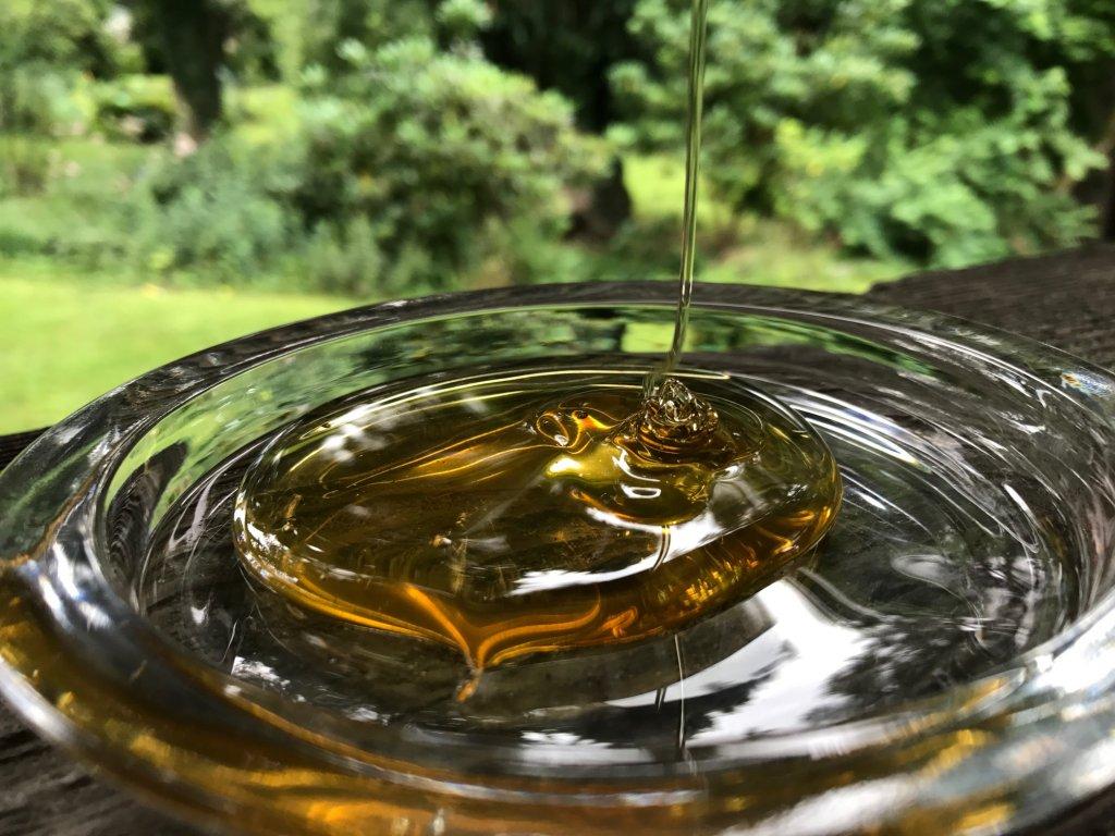 Honig tropft von einem Löffel herunter. Es bildet sich eine Honigpyramide. Eigener Honig nach Honigernte.